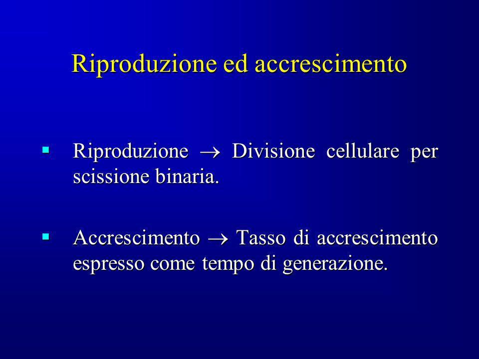 Riproduzione Divisione cellulare per scissione binaria. Riproduzione Divisione cellulare per scissione binaria. Accrescimento Tasso di accrescimento e