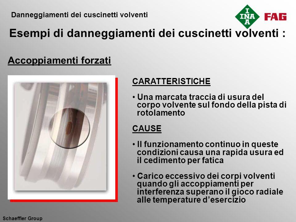 Schaeffler Group CARATTERISTICHE Una marcata traccia di usura del corpo volvente sul fondo della pista di rotolamento CAUSE Il funzionamento continuo