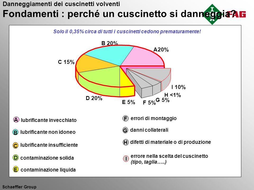 Schaeffler Group B 20% A 20% C 15% D 20% E 5% F 5% G 5% I 10% H <1% errori di montaggio F danni collaterali G difetti di materiale o di produzione H e