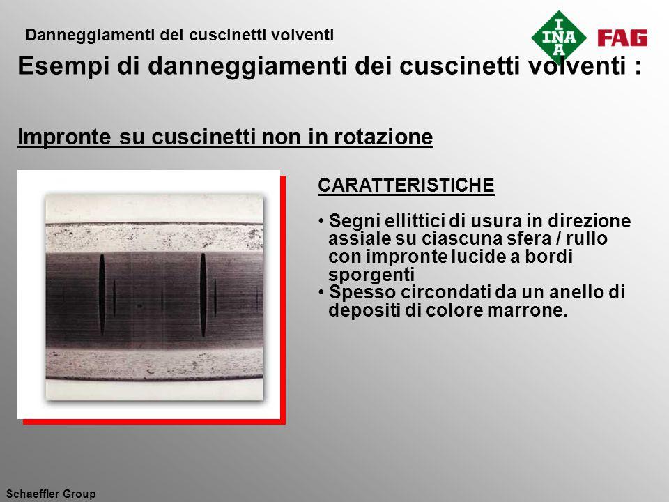 Schaeffler Group Impronte su cuscinetti non in rotazione CAUSE Le vibrazioni hanno causato micromovimenti tra i corpi volventi e le piste di rotolamento Non vi è formazione di film lubrificante che prevenga lusura della pista di rotolamento quando il cuscinetto non è in rotazione RIMEDI Eliminare o assorbire le vibrazioni esterne Usare lubrificanti con additivi antiusura Danneggiamenti dei cuscinetti volventi Esempi di danneggiamenti dei cuscinetti volventi :