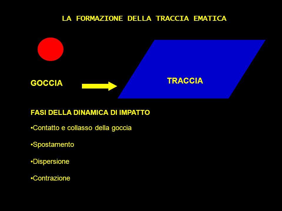 LA FORMAZIONE DELLA TRACCIA EMATICA FASI DELLA DINAMICA DI IMPATTO Contatto e collasso della goccia Spostamento Dispersione Contrazione GOCCIA TRACCIA