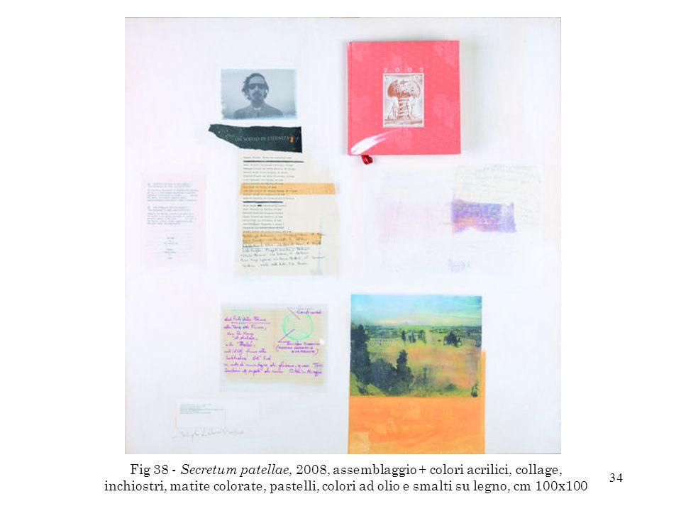 34 Fig 38 - Secretum patellae, 2008, assemblaggio + colori acrilici, collage, inchiostri, matite colorate, pastelli, colori ad olio e smalti su legno,