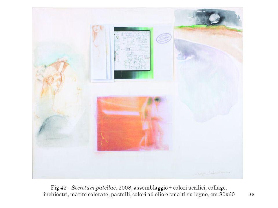 38 Fig 42 - Secretum patellae, 2008, assemblaggio + colori acrilici, collage, inchiostri, matite colorate, pastelli, colori ad olio e smalti su legno,