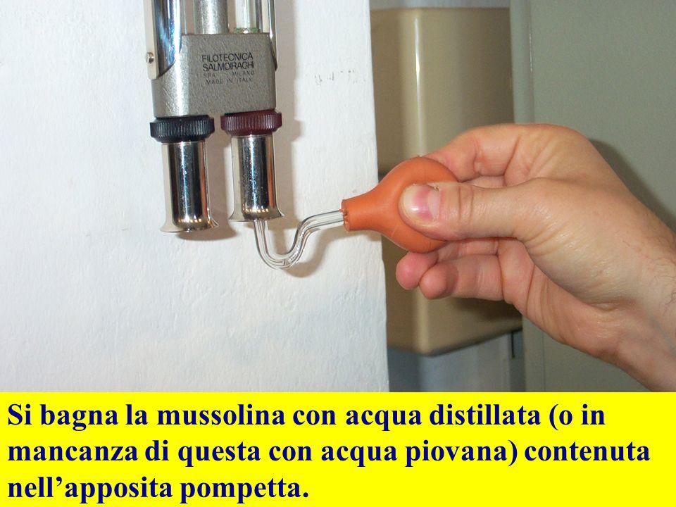 Si bagna la mussolina con acqua distillata (o in mancanza di questa con acqua piovana) contenuta nellapposita pompetta.