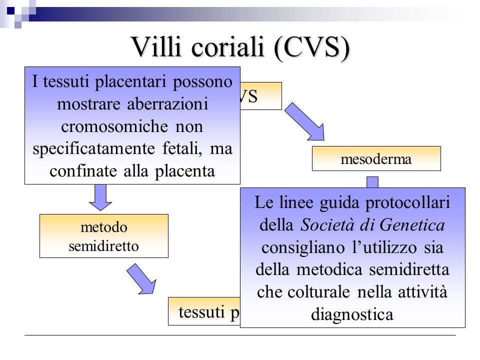 Villi coriali (CVS) CVS citotrofoblastomesoderma metodo semidiretto metodo a coltura tessuti placentari I tessuti placentari possono mostrare aberrazi