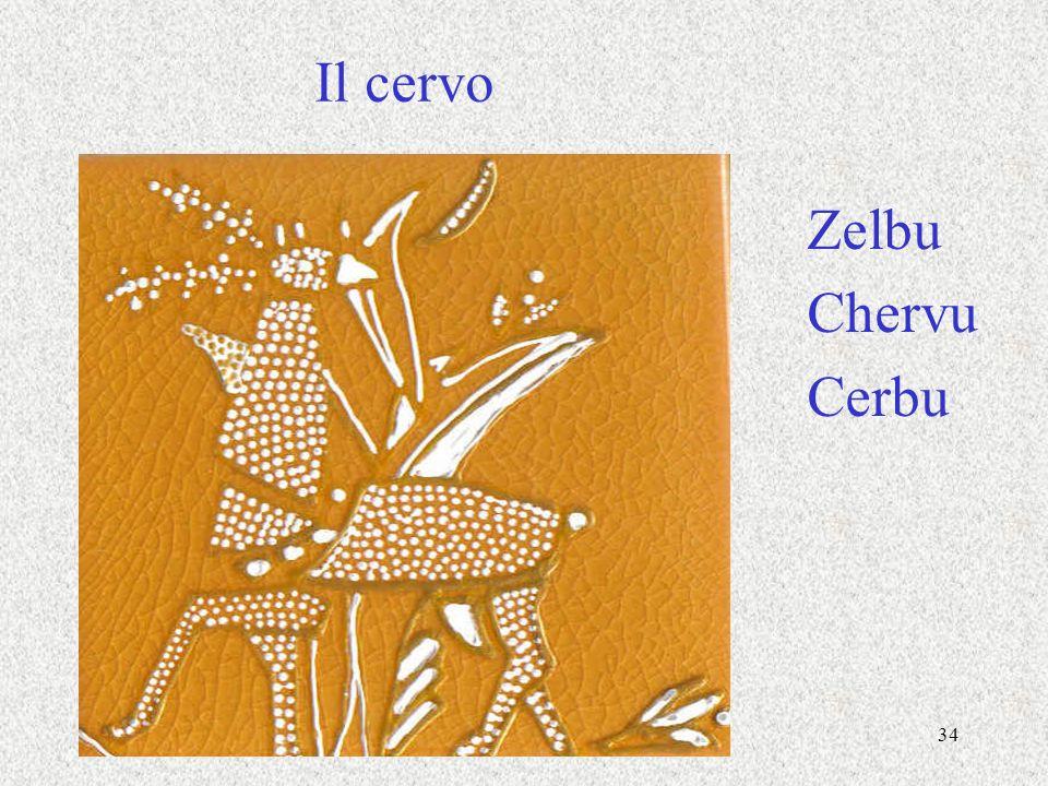 34 Il cervo Zelbu Chervu Cerbu