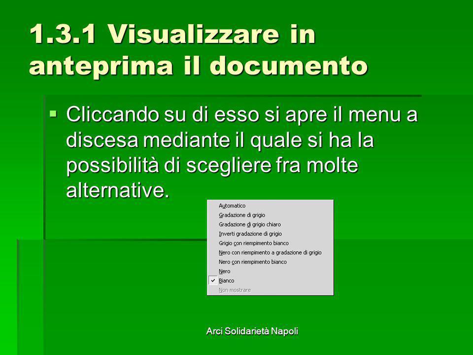 Arci Solidarietà Napoli 1.3.1 Visualizzare in anteprima il documento Cliccando su di esso si apre il menu a discesa mediante il quale si ha la possibi