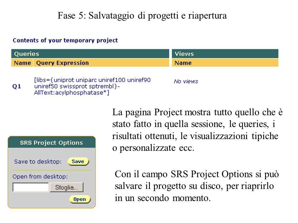 Fase 5: Salvataggio di progetti e riapertura La pagina Project mostra tutto quello che è stato fatto in quella sessione, le queries, i risultati otten