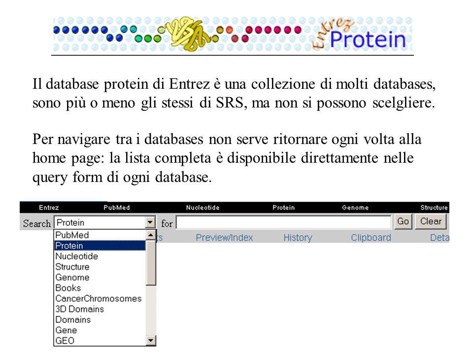 Il database protein di Entrez è una collezione di molti databases, sono più o meno gli stessi di SRS, ma non si possono scelgliere. Per navigare tra i