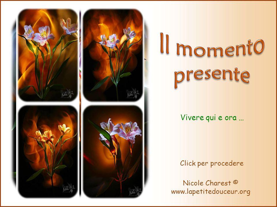 Vivere qui e ora … Nicole Charest © www.lapetitedouceur.org Click per procedere