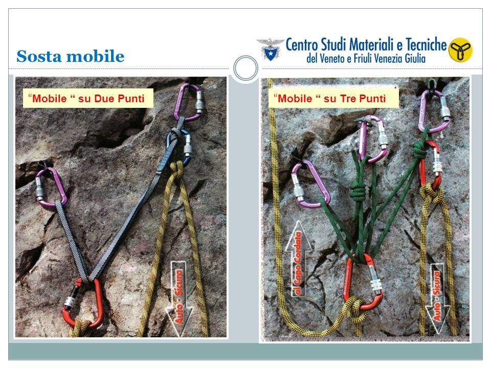 Sosta mobile Mobile su Due Punti Mobile su Tre Punti