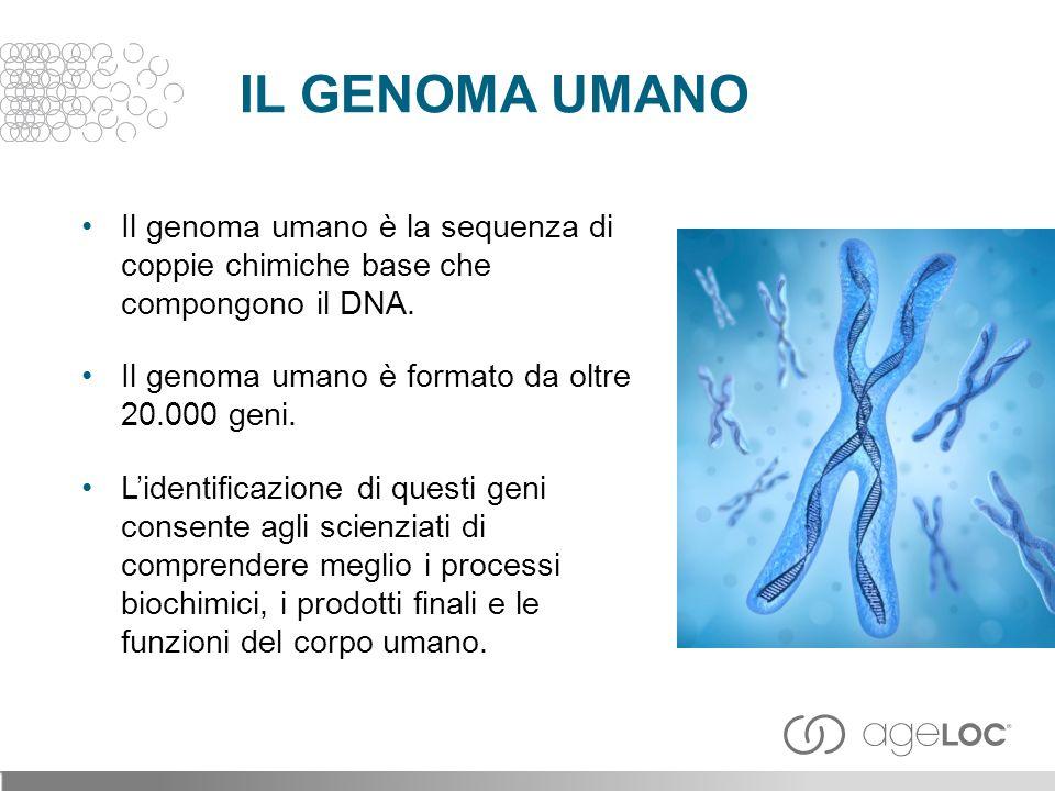 Il genoma umano è la sequenza di coppie chimiche base che compongono il DNA.