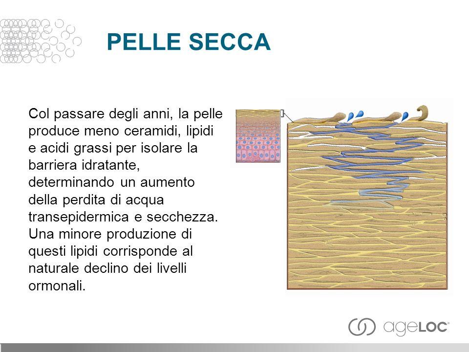 Col passare degli anni, la pelle produce meno ceramidi, lipidi e acidi grassi per isolare la barriera idratante, determinando un aumento della perdita di acqua transepidermica e secchezza.