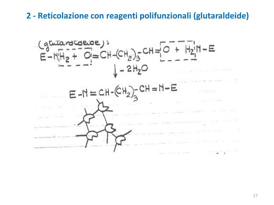 17 2 - Reticolazione con reagenti polifunzionali (glutaraldeide)