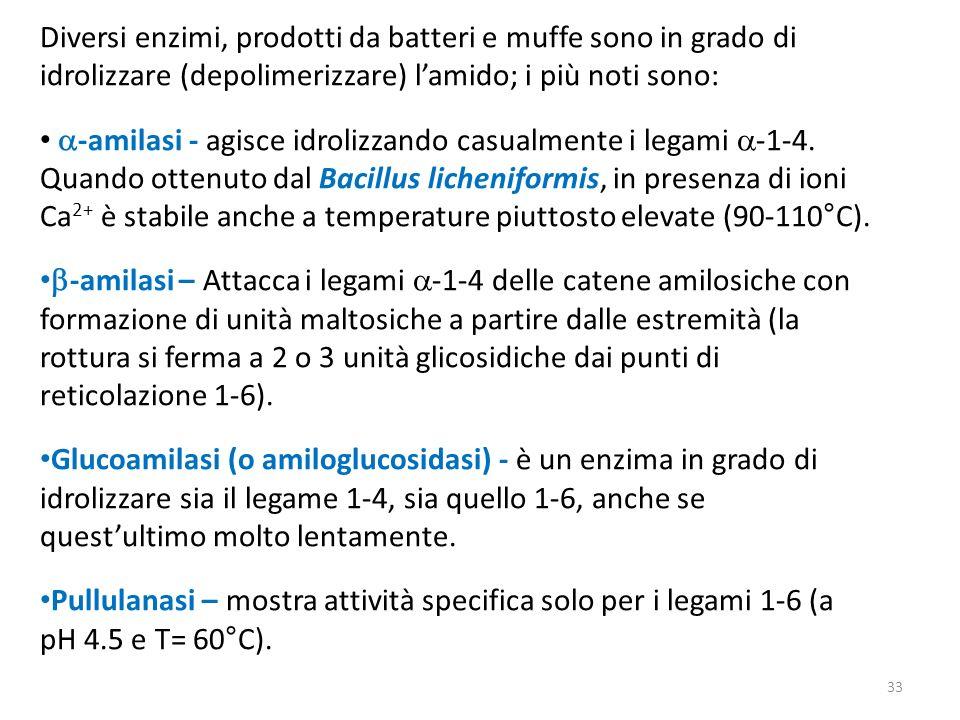 Diversi enzimi, prodotti da batteri e muffe sono in grado di idrolizzare (depolimerizzare) lamido; i più noti sono: -amilasi - agisce idrolizzando cas