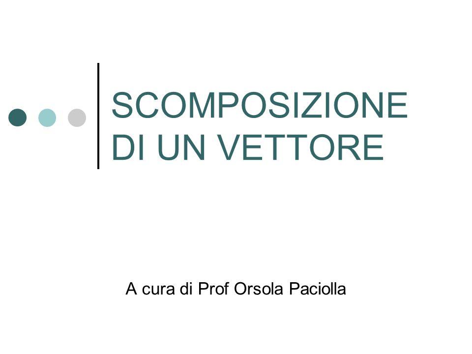 SCOMPOSIZIONE DI UN VETTORE A cura di Prof Orsola Paciolla