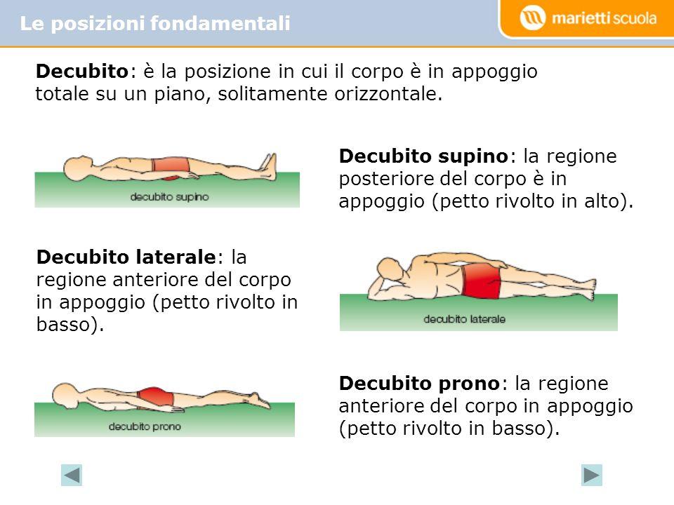 Le posizioni fondamentali Decubito supino: la regione posteriore del corpo è in appoggio (petto rivolto in alto).