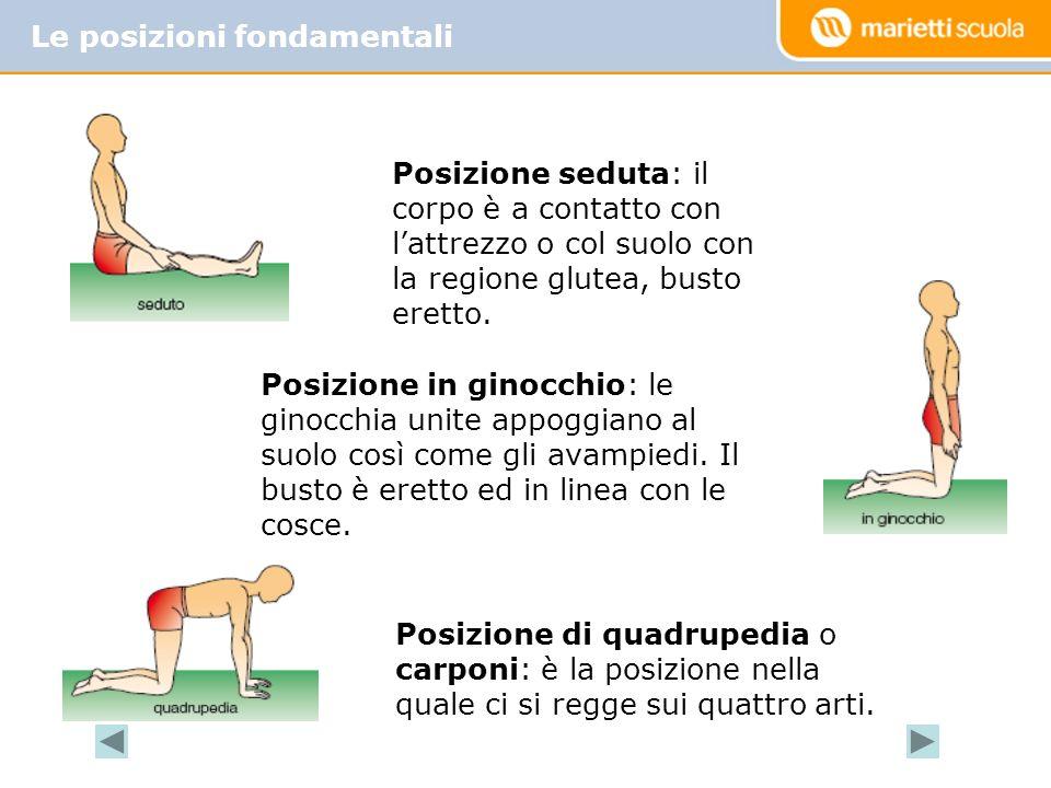 Le posizioni fondamentali Posizione seduta: il corpo è a contatto con lattrezzo o col suolo con la regione glutea, busto eretto.