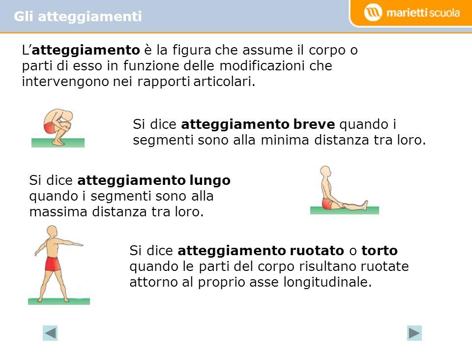 Gli atteggiamenti Latteggiamento è la figura che assume il corpo o parti di esso in funzione delle modificazioni che intervengono nei rapporti articolari.