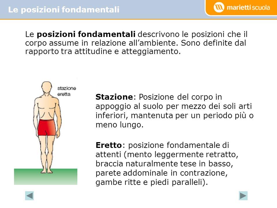 Le posizioni fondamentali descrivono le posizioni che il corpo assume in relazione allambiente.