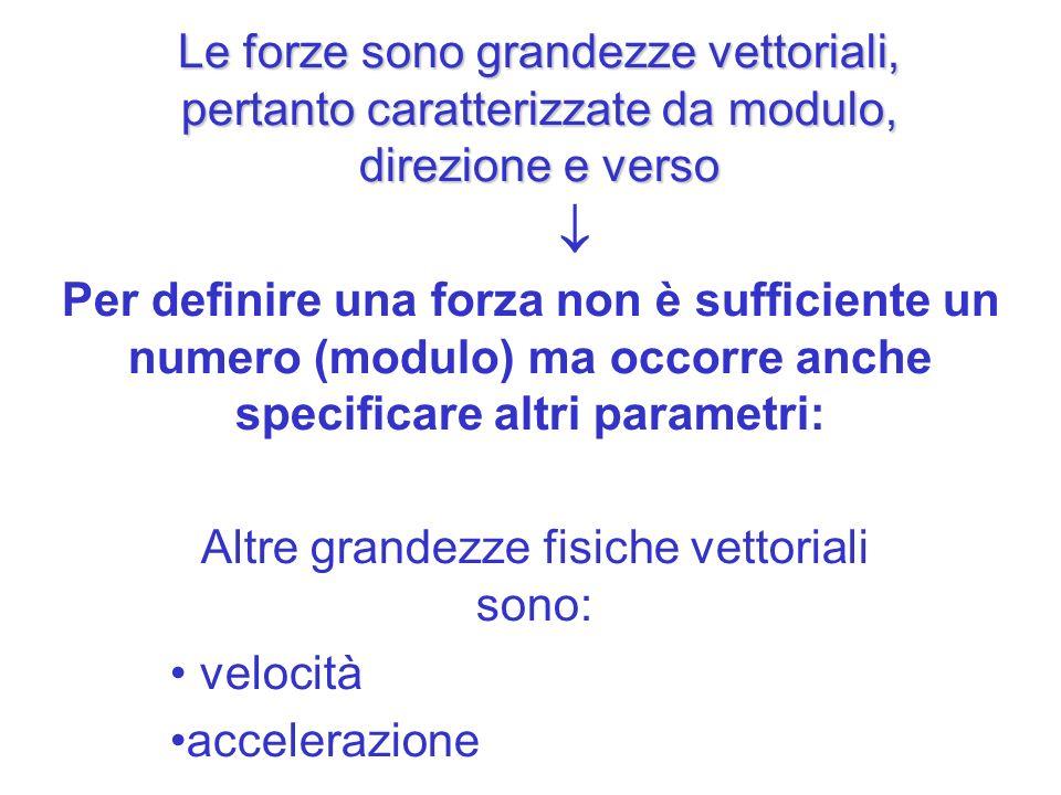 Le forze sono grandezze vettoriali, pertanto caratterizzate da modulo, direzione e verso Altre grandezze fisiche vettoriali sono: velocità accelerazio