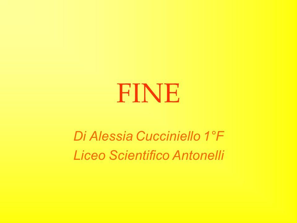 FINE Di Alessia Cucciniello 1°F Liceo Scientifico Antonelli