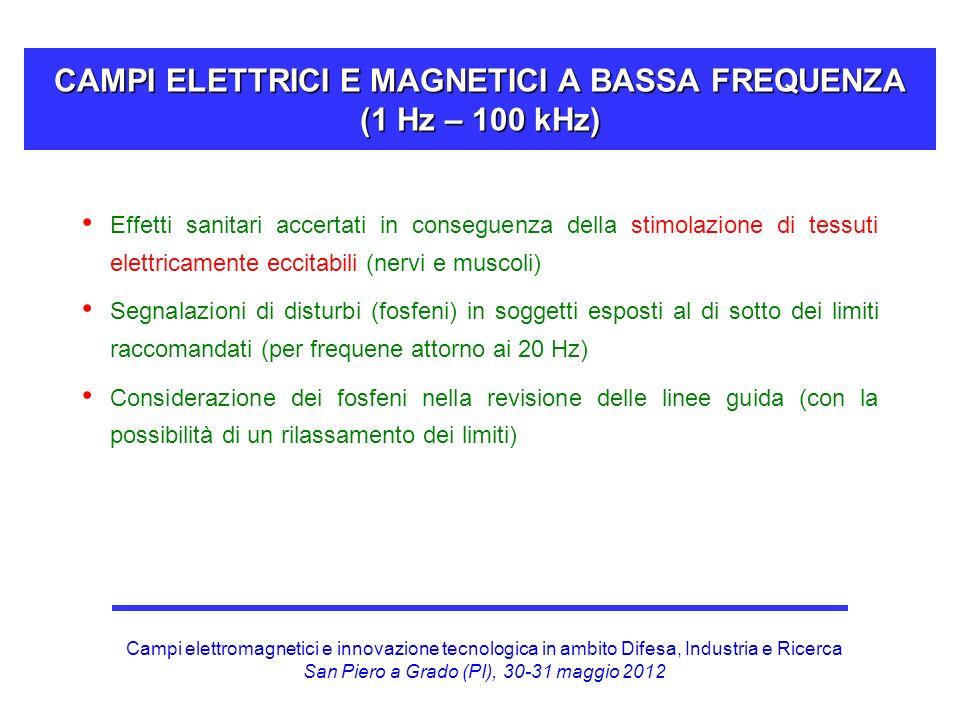 Campi elettromagnetici e innovazione tecnologica in ambito Difesa, Industria e Ricerca San Piero a Grado (PI), 30-31 maggio 2012 CAMPI ELETTRICI E MAG
