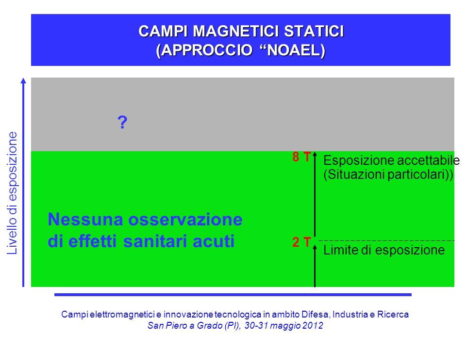 Campi elettromagnetici e innovazione tecnologica in ambito Difesa, Industria e Ricerca San Piero a Grado (PI), 30-31 maggio 2012 0 -1 Hz E MOVIMENTO IN CAMPI MAGNETICI STATICI
