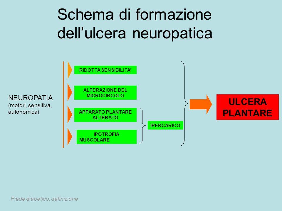 Schema di formazione dellulcera neuropatica NEUROPATIA (motori, sensitiva, autonomica) RIDOTTA SENSIBILITA ALTERAZIONE DEL MICROCIRCOLO APPARATO PLANT