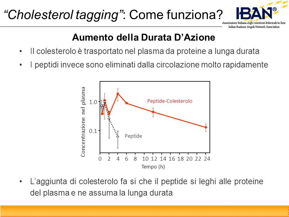Laggiunta di colesterolo fa si che il peptide si leghi alle proteine del plasma e ne assuma la lunga durata Tempo (h) Concentrazione nel plasma 0.1 1.