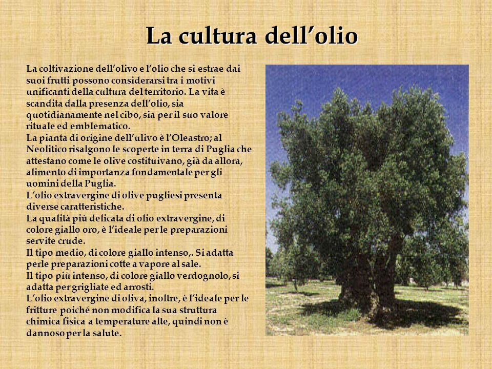 La coltivazione dellolivo e lolio che si estrae dai suoi frutti possono considerarsi tra i motivi unificanti della cultura del territorio. La vita è s