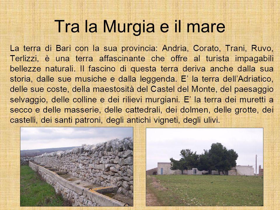Tra la Murgia e il mare La terra di Bari con la sua provincia: Andria, Corato, Trani, Ruvo, Terlizzi, è una terra affascinante che offre al turista im
