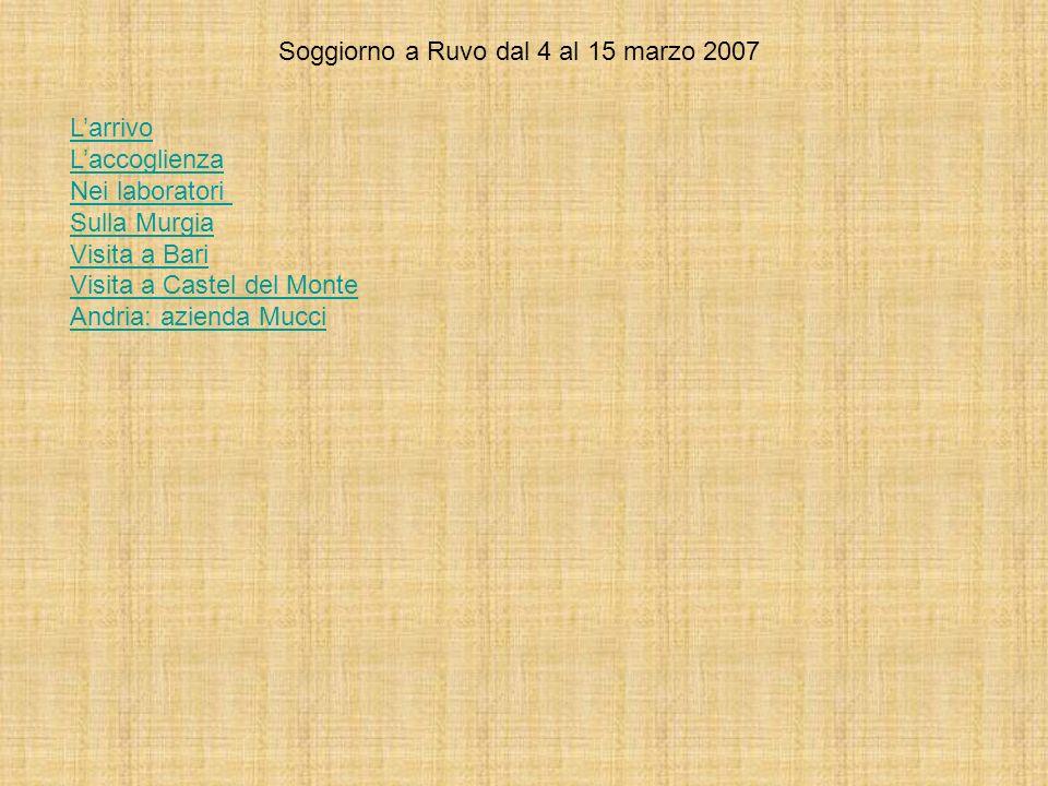 Soggiorno a Ruvo dal 4 al 15 marzo 2007 Larrivo Laccoglienza Nei laboratori Sulla Murgia Visita a Bari Visita a Castel del Monte Andria: azienda Mucci