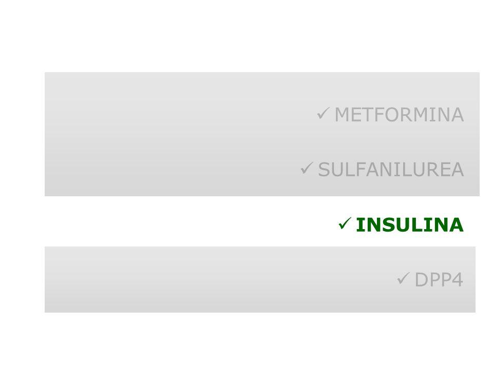 METFORMINA SULFANILUREA INSULINA DPP4