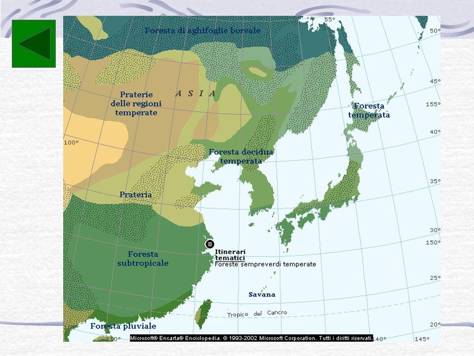 La catena principale è quella dei monti Taebaek, che si estende da nord a sud lungo la costa orientale, mentre la vetta più elevata, situata sull'isol