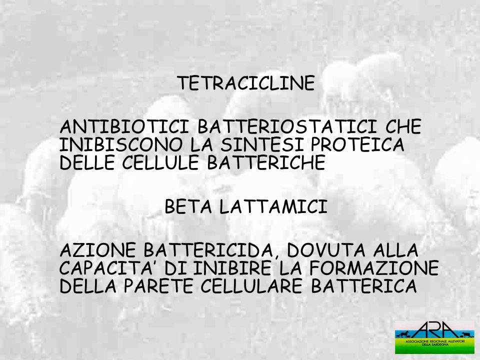 TETRACICLINE ANTIBIOTICI BATTERIOSTATICI CHE INIBISCONO LA SINTESI PROTEICA DELLE CELLULE BATTERICHE BETA LATTAMICI AZIONE BATTERICIDA, DOVUTA ALLA CA