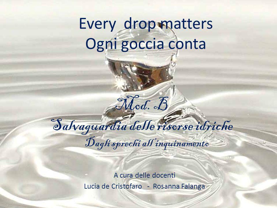 Every drop matters Ogni goccia conta Mod. B Salvaguardia delle risorse idriche Dagli sprechi allinquinamento A cura delle docenti Lucia de Cristofaro