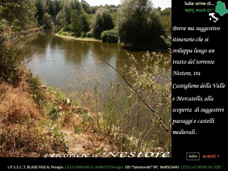 Sulle orme di… …di orme Sulle avanti > Breve ma suggestivo itinerario che si sviluppa lungo un tratto del torrente Nestore, tra Castiglione della Valle e Mercatello, alla scoperta di suggestivi paesaggi e castelli medievali.