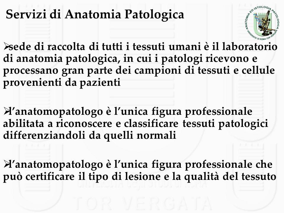 Servizi di Anatomia Patologica sede di raccolta di tutti i tessuti umani è il laboratorio di anatomia patologica, in cui i patologi ricevono e process