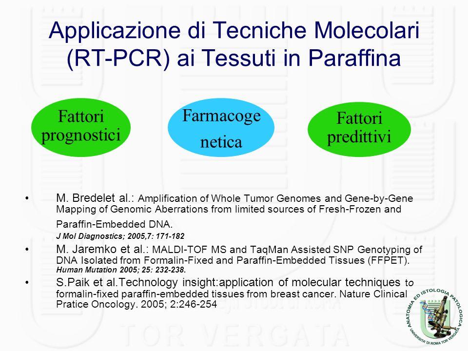 Applicazione di Tecniche Molecolari (RT-PCR) ai Tessuti in Paraffina M. Bredelet al.: Amplification of Whole Tumor Genomes and Gene-by-Gene Mapping of