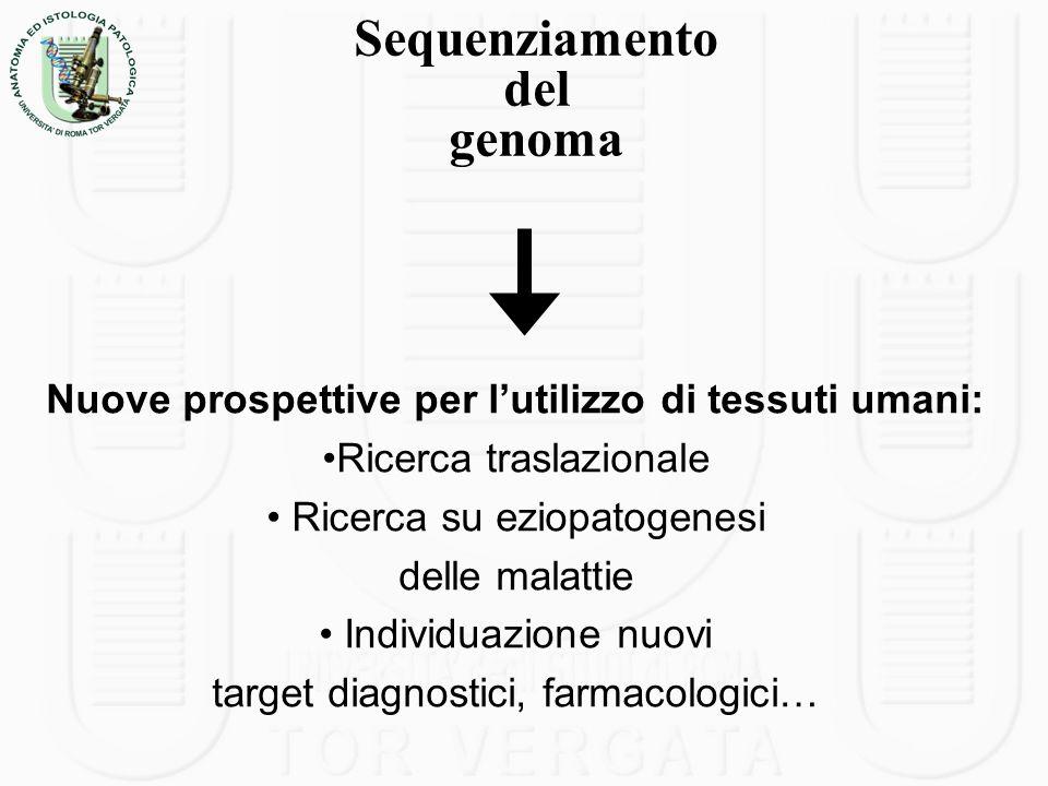 Nuove prospettive per lutilizzo di tessuti umani: Ricerca traslazionale Ricerca su eziopatogenesi delle malattie Individuazione nuovi target diagnosti