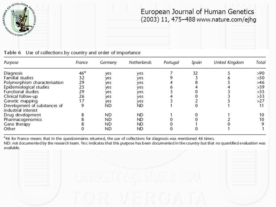 European Journal of Human Genetics (2003) 11, 475–488 www.nature.com/ejhg
