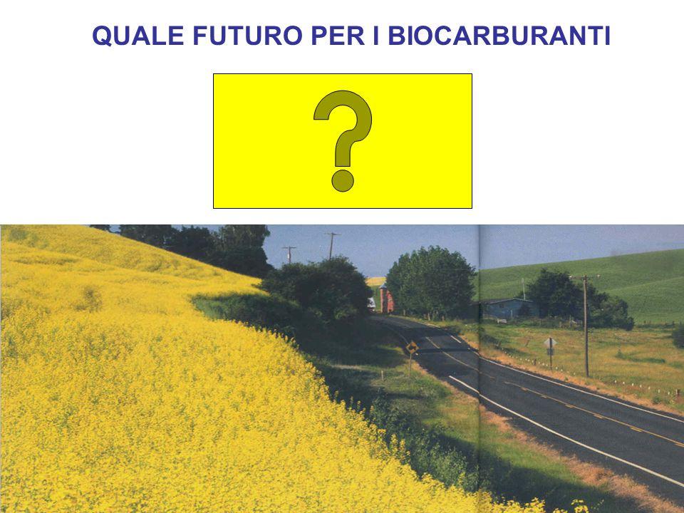 QUALE FUTURO PER I BIOCARBURANTI