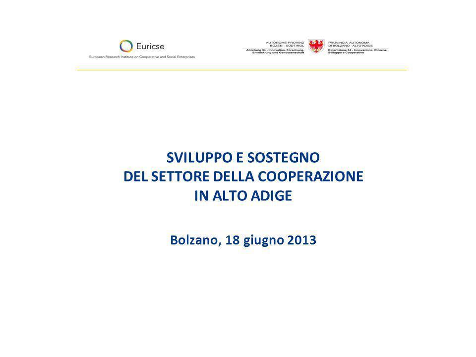 SVILUPPO E SOSTEGNO DEL SETTORE DELLA COOPERAZIONE IN ALTO ADIGE Bolzano, 18 giugno 2013