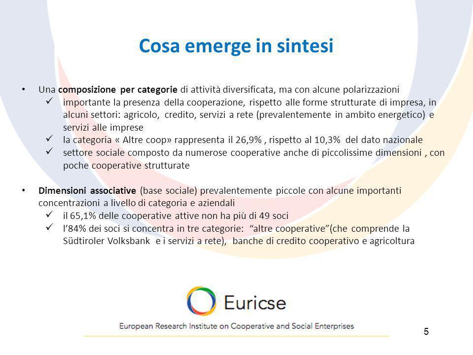 CONCLUSIONI 1.Si conferma la rilevanza del fenomeno cooperativo in provincia di Bolzano; 2.i settori si distinguono per livelli di maturità e di potenzialità piuttosto diversificati; 3.questa diversificazione condiziona la valutazione dellintervento pubblico, sia dal lato dellofferta che dal lato della domanda; 4.le trasformazioni del contesto, provinciale e non (finanza pubblica, mercato del lavoro, domanda di servizi, …), impongono una revisione degli strumenti di policy; 5.le linee- guida indicate ai fini di tale revisione sono assi che richiedono una ulteriore fase di definizione e sperimentazione.