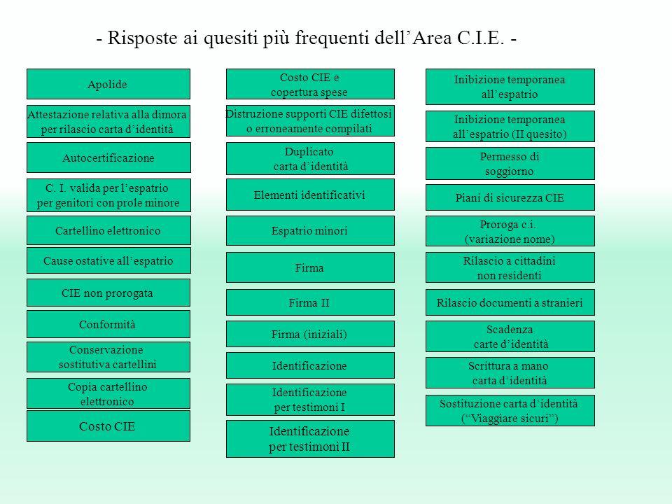 Conformità Duplicato carta didentità Apolide CIE non prorogata Scrittura a mano carta didentità Proroga c.i.