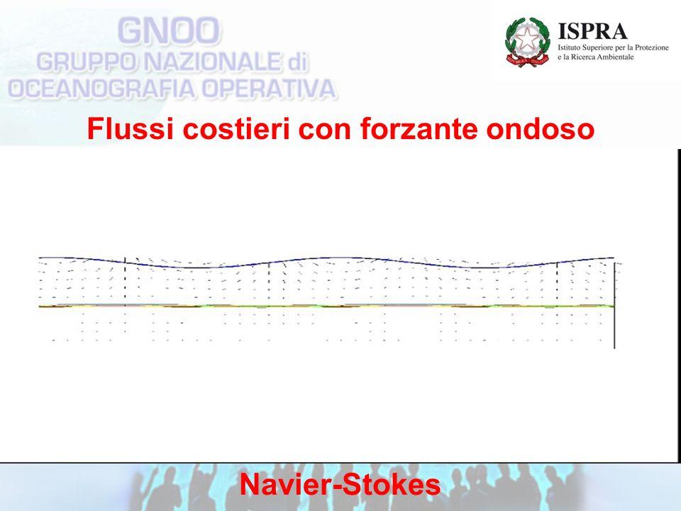 Flussi costieri con forzante ondoso Navier-Stokes