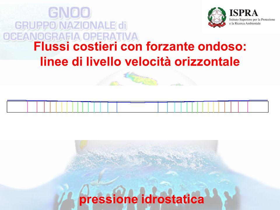 Flussi costieri con forzante ondoso: linee di livello velocità orizzontale pressione idrostatica