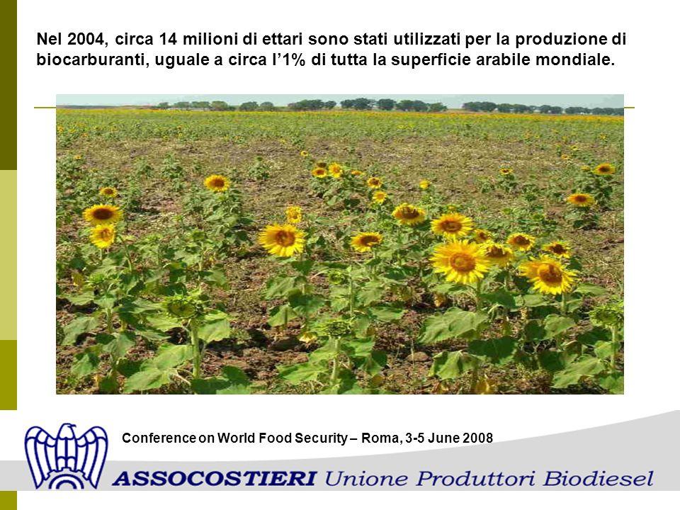 Nel 2004, circa 14 milioni di ettari sono stati utilizzati per la produzione di biocarburanti, uguale a circa l1% di tutta la superficie arabile mondi