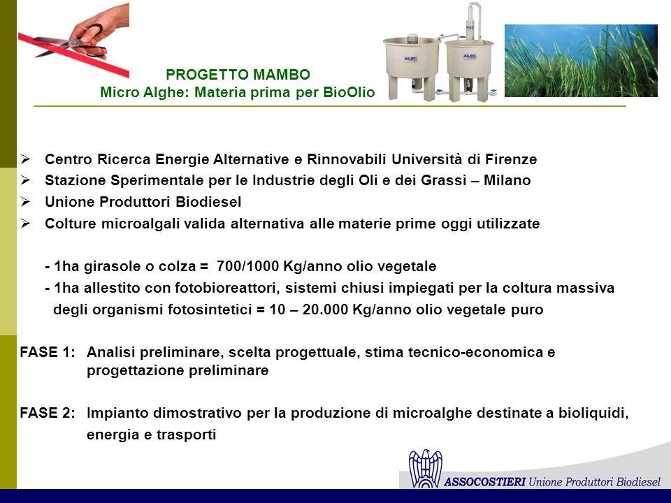 Centro Ricerca Energie Alternative e Rinnovabili Università di Firenze Stazione Sperimentale per le Industrie degli Oli e dei Grassi – Milano Unione P
